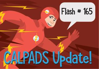 FlashUpdate